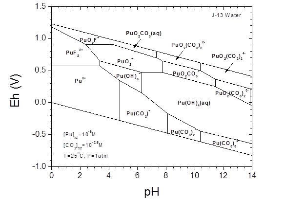 Appendix Soterm  Actinide Chemistry Source Term